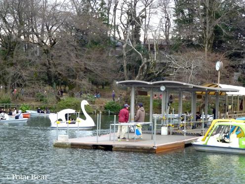 吉祥寺の井の頭公園