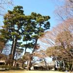 大田黒公園(おおだくろこうえん)