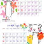 ポーラベア フェレットカレンダー3月&4月