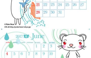2017年フェレットカレンダー5月6月
