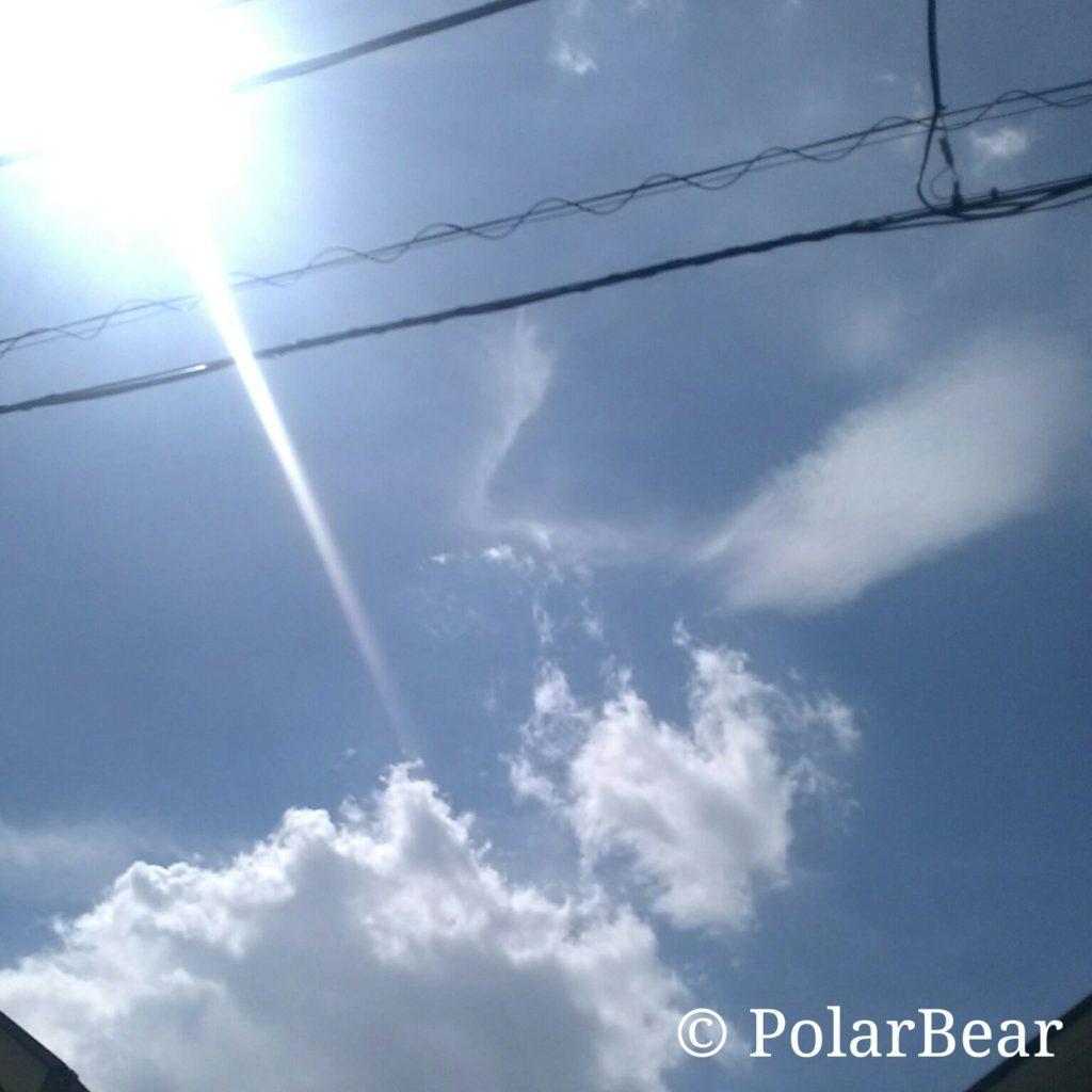 2018年 大暑 ポーラベア 東京都 40度超え 初観測