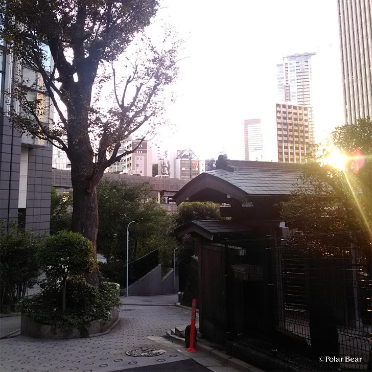 赤坂 六本木 道源寺坂 ポーラベア