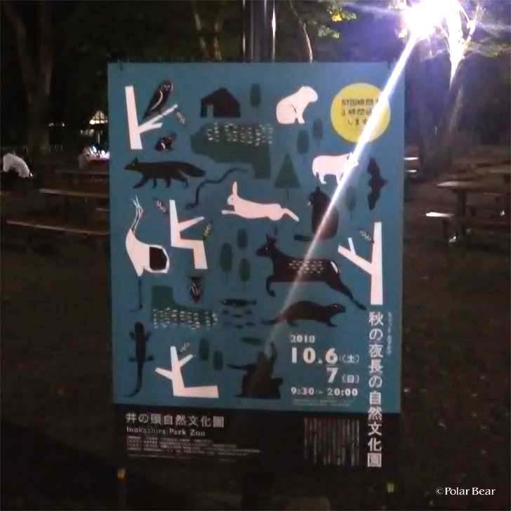吉祥寺 井の頭自然文化園 秋の夜長の自然文化園 ポーラベア