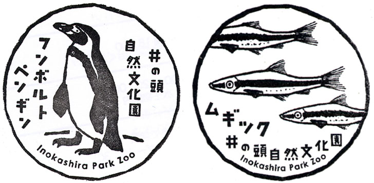 秋の夜長の自然文化園 井の頭自然文化園 吉祥寺 ポーラベア