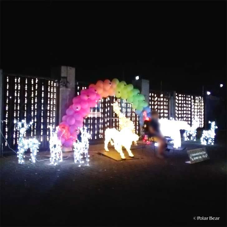 吉祥寺 井の頭自然文化園 秋の夜長の自然文化園 ポーラベア イルミネーション