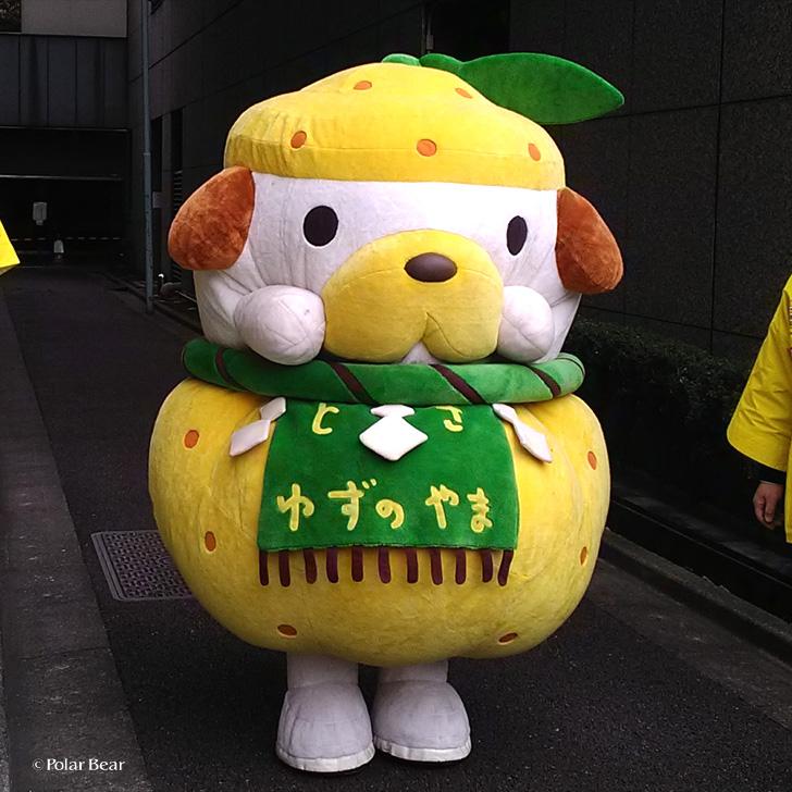 高知県 土佐 ゆずのやま キャラクター アンテナショップ 東京駅 ポーラベア