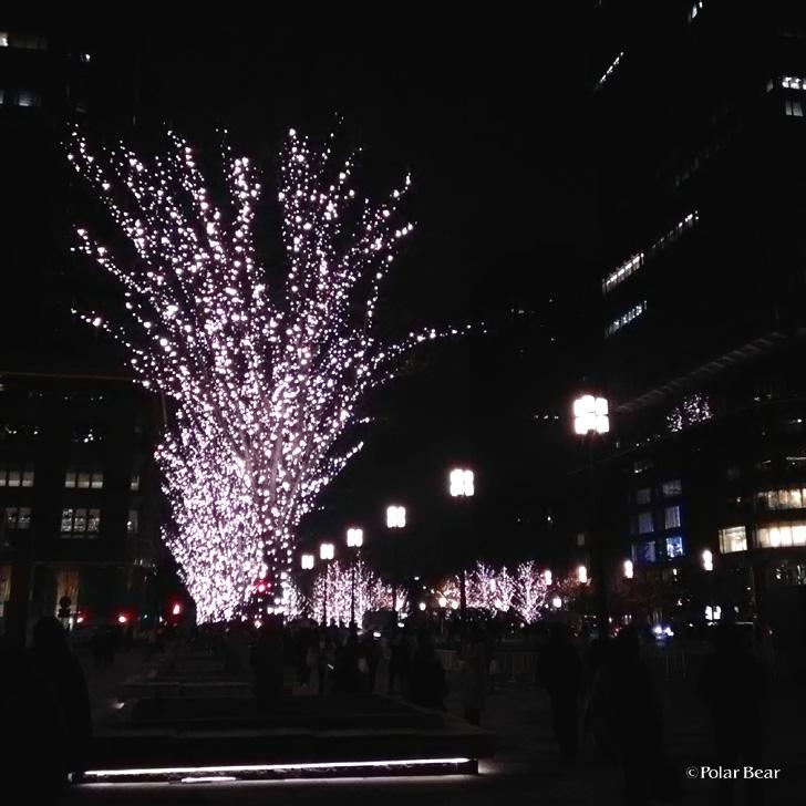 東京駅 イルミネーション ポーラベア