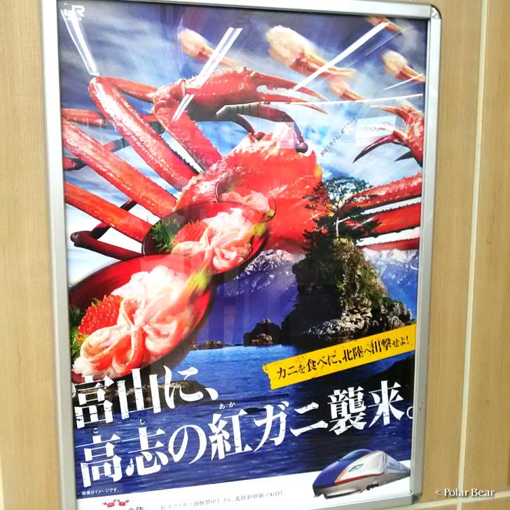 蟹 ポスター ポーラベア 高志の紅ガニ
