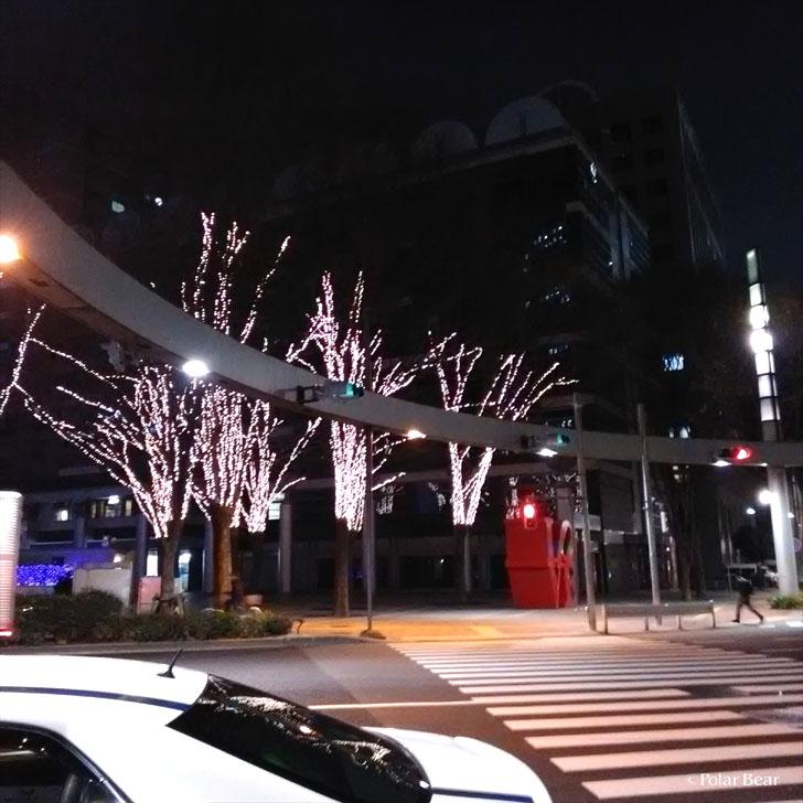 新宿 ポーラベア
