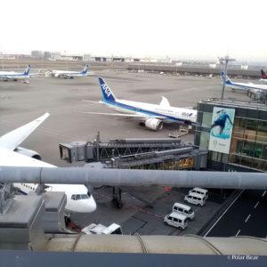 羽田空港 国際線ターミナル ポーラベア