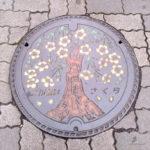 東京都小金井市 マンホール さくら ポーラベア