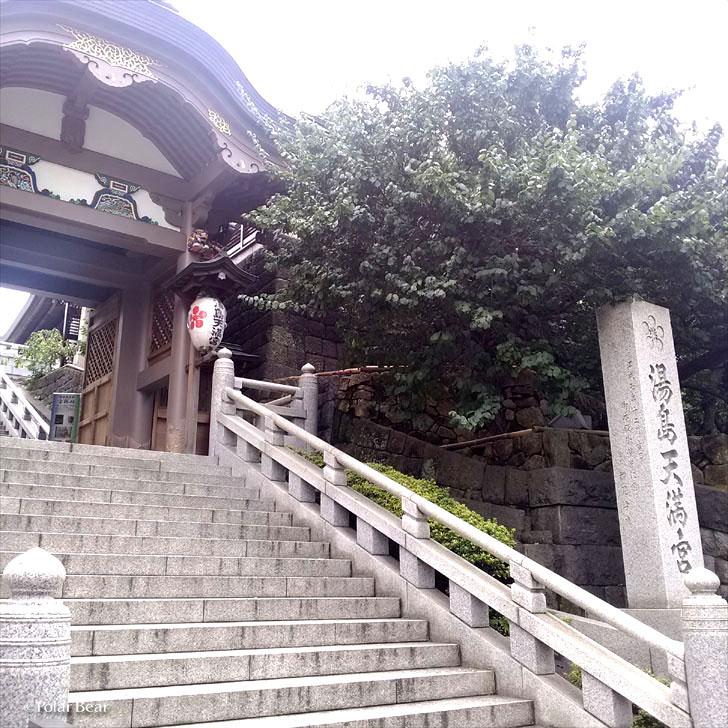 湯島天満宮 湯島天神 東京都 文京区 ポーラベア