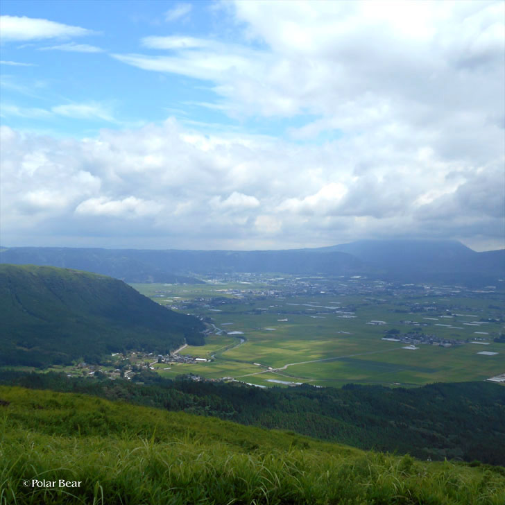 熊本県 阿蘇 観光 ポーラベア
